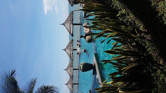 Lotus Village Resort: IMG-20161118-WA0009_large.jpg