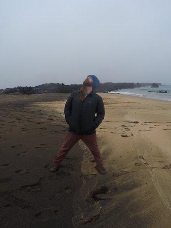Kopavogur, İzlanda: Black and tan beach!