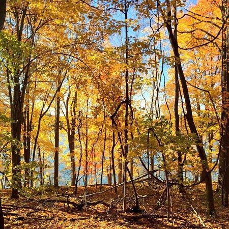 Hudson, OH: photo1.jpg
