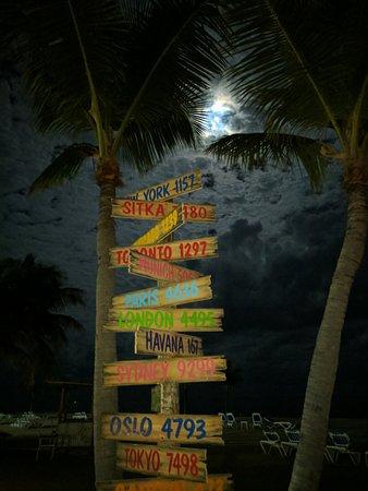Islander Resort, a Guy Harvey Outpost: IMG_20161114_212054_large.jpg