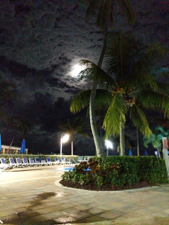 Islander Resort, a Guy Harvey Outpost: 00002IMG_00002_BURST20161114202253_large.jpg