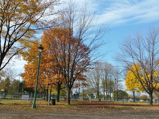 Parc St. Martin