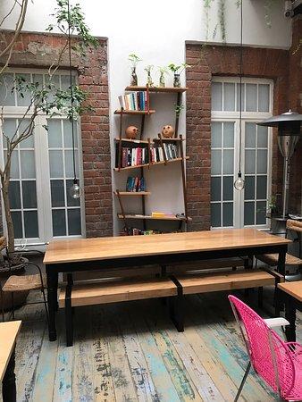 El patio 77, first eco-friendly B&B in Mexico City: photo6.jpg