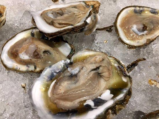 Douglaston, NY: Oysters