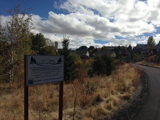 Itani Park: Trail and conservation area