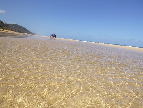 Tewantin, ออสเตรเลีย: Noosa North Shore Beach Driving