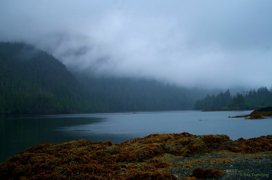Queen Charlotte City, Canada: West Coast Mists near Burnaby Narrows in Gwaii Haanas National Park