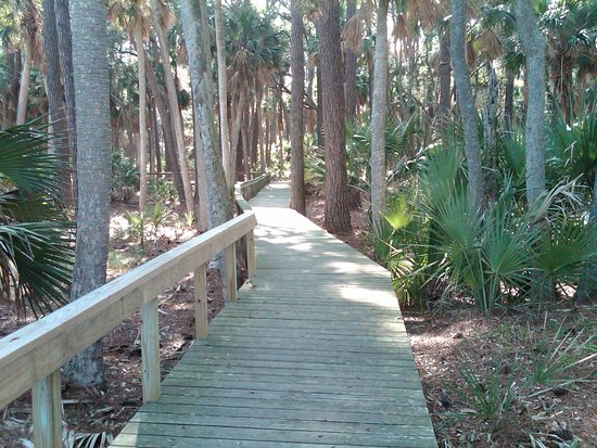 Hunting Island State Park: Hunting Is St Park  Beach Boardwalk March 2011_large.jpg