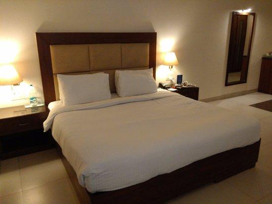Baddi, الهند: Room View