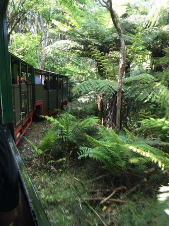 Driving Creek Railway and Potteries: photo0.jpg