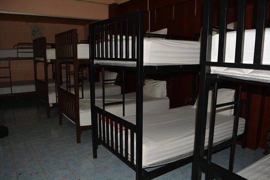 Little Austria Tams Guesthouse : Backpacker dormitory