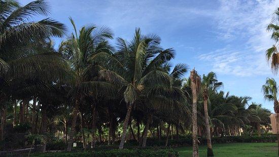 Hotel Riu Funana Photo