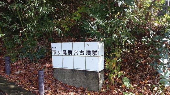 Ichigaoka Ancient Tomb