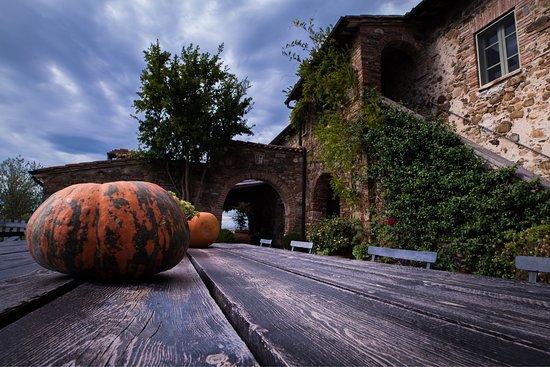 Sarteano, Italien: Silence and a real Tuscany experience    -DesmetArts.com-