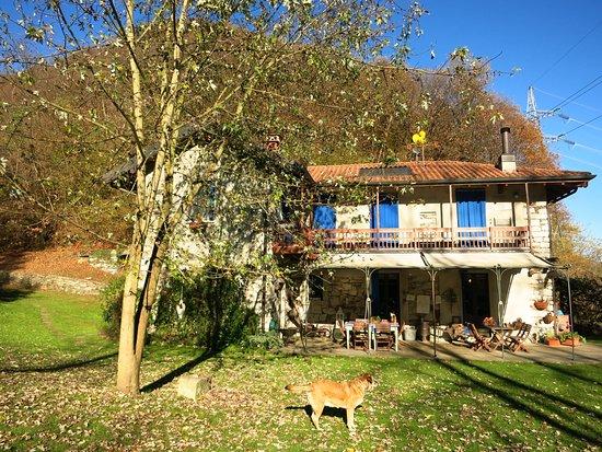 San Maurizio d'Opaglio, Италия: giardino