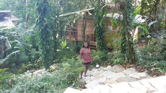 Boca Chica, Panama: Cabañas perfectas
