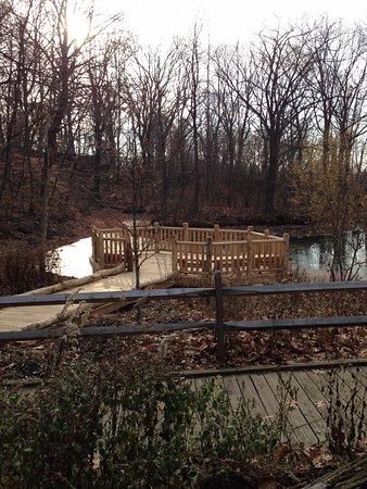 Englewood, NJ: Lake overlook