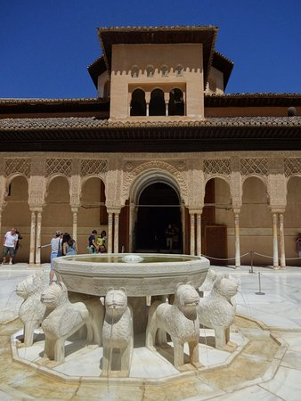 Province of Granada, Spain: かわいいライオン