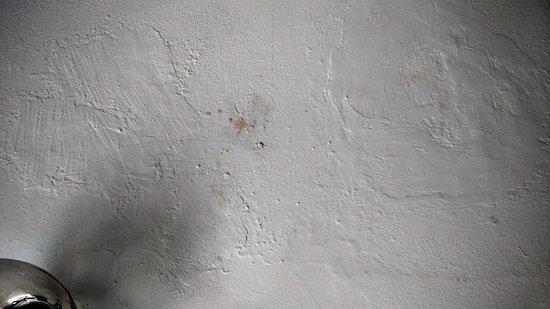 Wasserschaden Decke wasserschaden und schimmelige decke - picture of dunkley house, cape