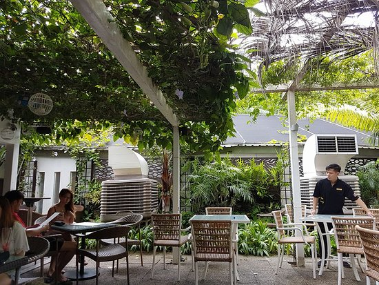 Canopy Garden Dining Outdoor Seating