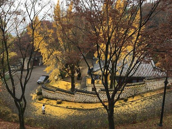 Jinju, Güney Kore: photo9.jpg