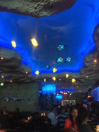 Aquarium Restaurant: photo2.jpg
