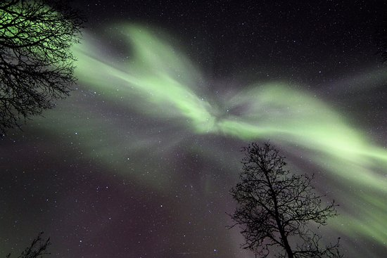 Krokelvdalen, Noorwegen: This aurora was moving really like storm...spectacular for our eyes, but difficult for camera sh