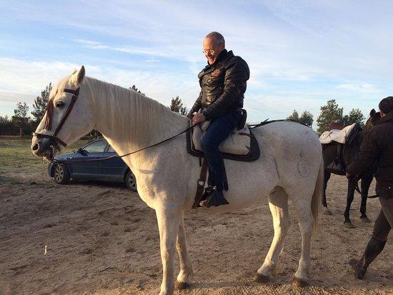 El Rocío, España: Intentando hacerme amigo de quien iba a llevarme a lomos