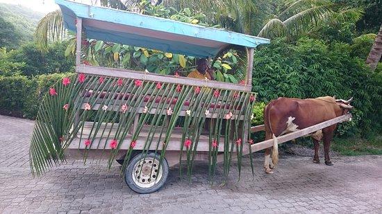 Pulau Praslin, Seychelles: decouverte de l'ile à vélo ou en taxi local