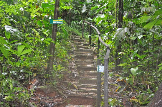 Parrita, Costa Rica: Starting of the trek