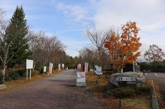 Toki no Mori Park: トキの森公園
