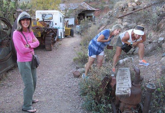 Jerome, AZ: Snake Discovery