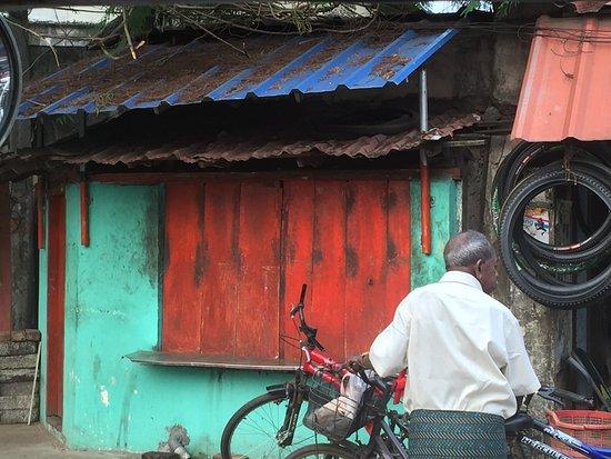 Kochi Travel Guide - Day Tours