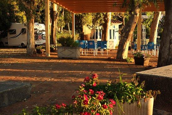 International Camping Village LaTimpa: camping