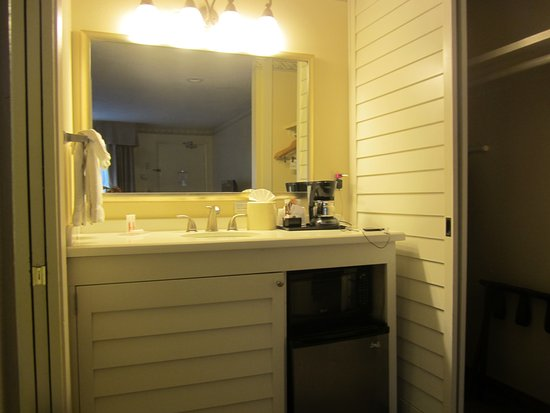 Sink Bathroom Area with Microwave and Refrigerator Picture of Days