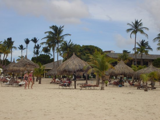 Manchebo Beach Resort & Spa : picture from water to grounds