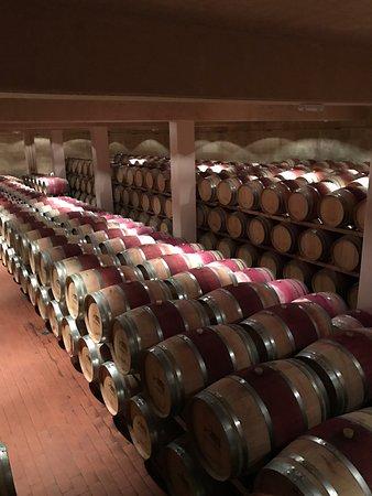 Kafraiya, Líbano: wines