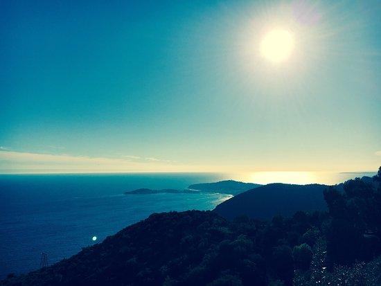 Eza Vista: photo1.jpg