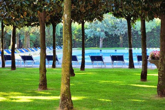 Hotel Terme Metropole: Pinien und Palmenbestand