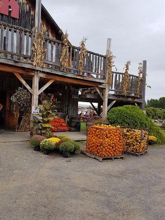 Notre-Dame-de-l'Ile-Perrot, Kanada: Farm shop