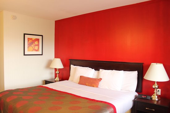 Ramada Limited Calgary Northwest: Non Smoking King Bed Room