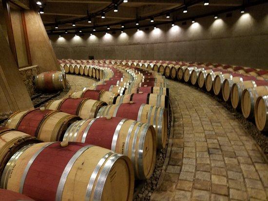 Agrelo, Argentina: Magnificent barrel cellar