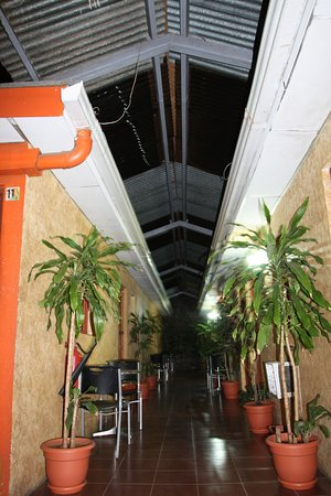 Hotel Villa Angelo: Такой весёленький коридорчик.
