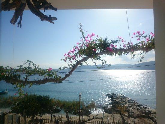 Petries, กรีซ: Θεα απο το δωματιο.νοεμβριος 2016