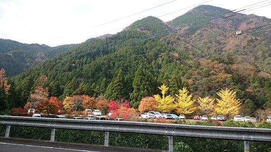 那賀町, 徳島県, DSC_1140_large.jpg