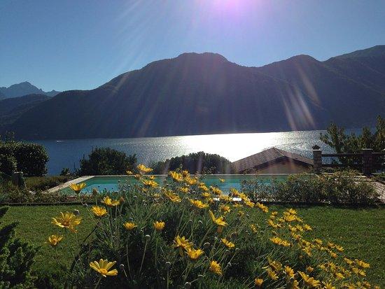 Mezzegra, Italy: Sehr gepflegter Garten mit Traumaussicht