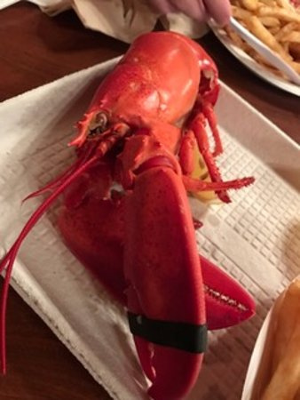 North Hampton, Nueva Hampshire: Good size lobster