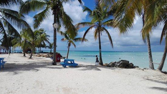 Buccoo, Tobago: IMG_20161117_121331_large.jpg