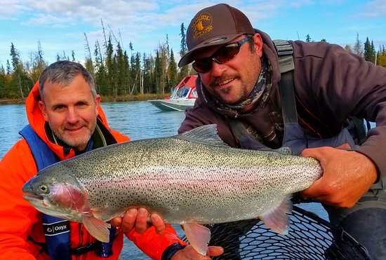 Sterling, Αλάσκα: Chunky September bow on the Kenai River