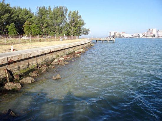 The fishing pier picture of sand key park clearwater for Clearwater fishing pier